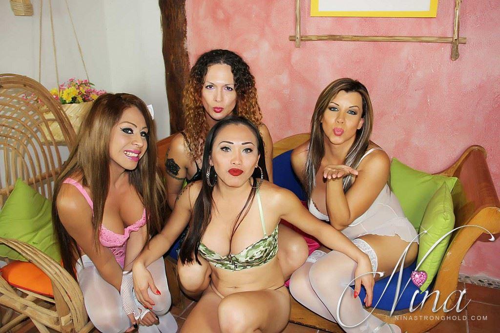 Sexy Shemale Pornstars